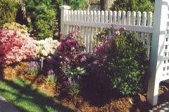 English Cottage Garden With Fence