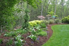 Installed New Planting Area With Accenting Shrubs