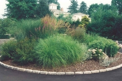 Installed Low Maintenance Driveway Medallion Planting