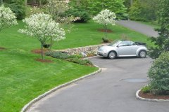 Expanded Parking Area and Installed Flowering Trees