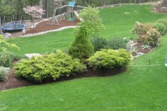 Extended Back Yard to Create Play Area and Provide New Plantings