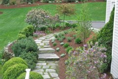 Accented Existing Planting With Perennials