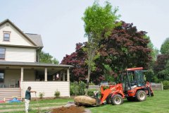 Moving Large Trees With Ease