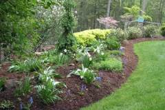 management-edged-mulched-mixed-border