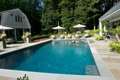 Pool with hardy Planting