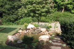 Transplanted Flowering Tree to Bring Shade to Newly Installed Pond